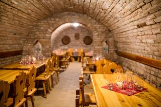 Amande Wine Wellness Hotel-Hustopeče-pobyt-Vinař
