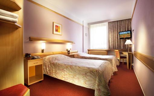 Hotel Akademie Velké Bílovice 1154268771