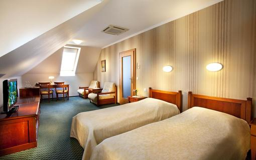 Hotel Akademie Velké Bílovice 1154268781