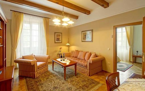 Hotel Akademie Velké Bílovice 1154268789