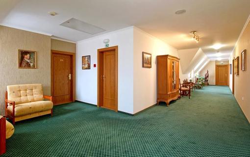 Hotel Akademie Velké Bílovice 1154268793