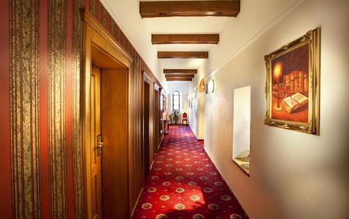Hotel Akademie Velké Bílovice 1154268791