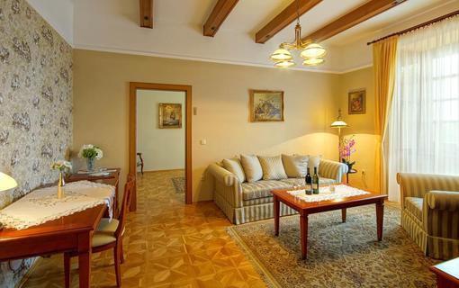 Hotel Akademie Velké Bílovice 1154268745