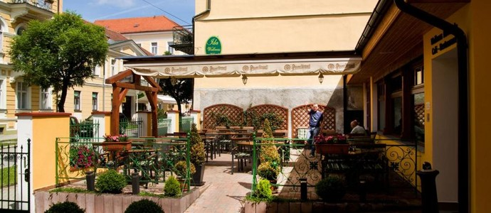 Wellness hotel Ida Františkovy Lázně 1117531070