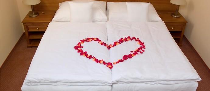 Wellness hotel Ida Františkovy Lázně 1143343307