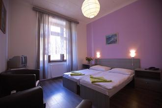 Hotel Olga Praha 48679952