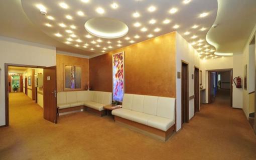 Wellness & Spa hotel Richard 1157059739