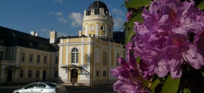 Zámek Šilheřovice 39877432