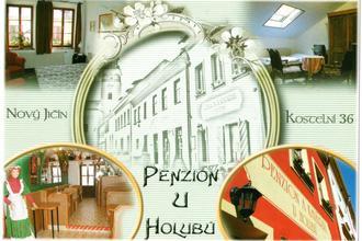 Penzion U Holubů Nový Jičín 45346180