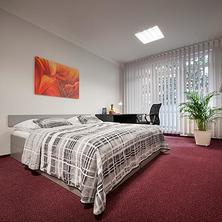 HOTEL APARTMAN Praha 40101440