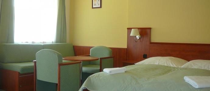 Hotel Praha Deštné v Orlických horách 50662172