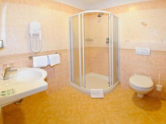 Hotel Alexis 1154725321