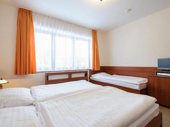 Hotel Alexis 1154725309