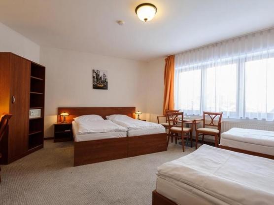 Hotel Alexis 1154725311