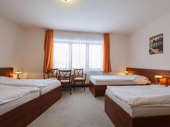 Hotel Alexis 1154725313
