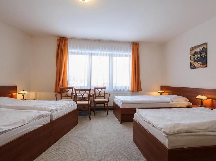 Hotel Alexis 1154725313 2