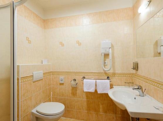 Hotel Alexis 1154725325