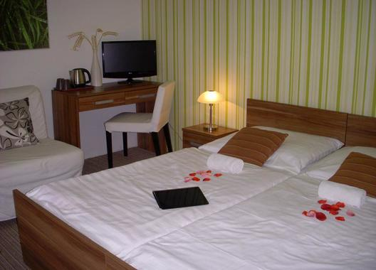 Rezidence-Fami-De-Luxe-Design---Máchovo-jezero-4