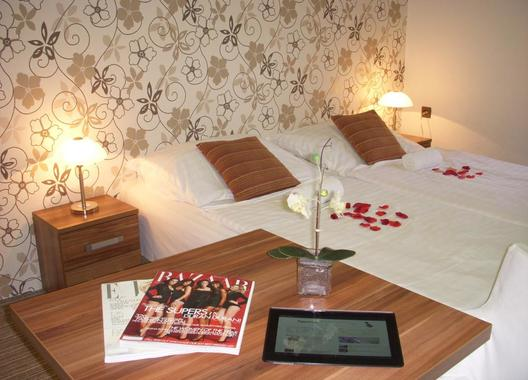 Rezidence-Fami-De-Luxe-Design---Máchovo-jezero-6