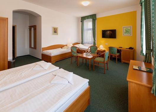 Wellness-Hotel-U-Sládka-11
