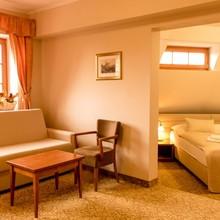 Hotel Vítkova Hora Karlovy Vary 1151816847