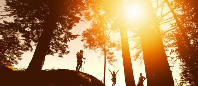 Wellness hotel Říčky-Říčky v Orlických horách-pobyt-Týden na horách: 6+1 noc ZDARMA
