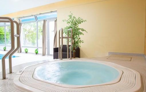 Prodloužený víkend v Orlických horách-Wellness hotel Říčky 1154310463