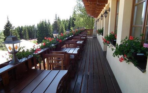 Hotel Alpská vyhlídka 1157229545