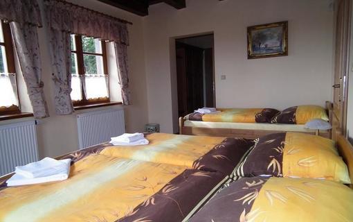 Hotel Alpská vyhlídka 1157229513