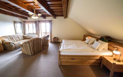 Hotel Alpská vyhlídka 1157229523