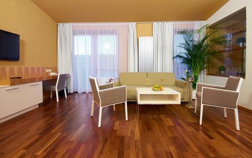 Spa Resort Lednice Apartmán