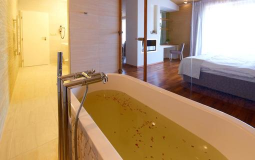 Spa Resort Lednice 1157129803