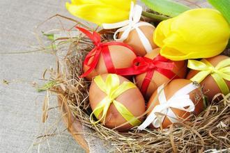 Spa Resort Lednice-pobyt-Velikonoční pobyt v Lednici