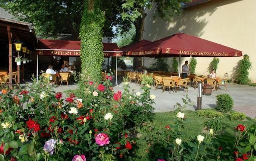 Hotel Ametiszt Harkany 1147786341
