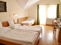Hotel Ametiszt Harkany 1147786335