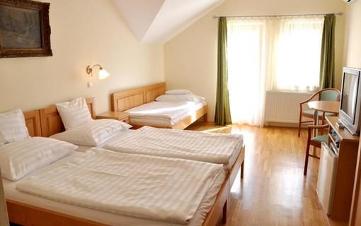 Dny wellness v lázních Harkány-Hotel Ametiszt Harkany 1147786335