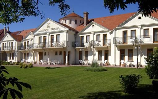 Dny wellness v lázních Harkány-Hotel Ametiszt Harkany 1147786363