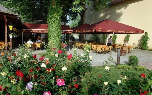 Relax v lázních Harkány na 7 nocí-Hotel Ametiszt Harkany 1147786369