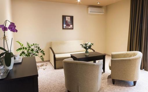 Hotel Kudowa 1151193153