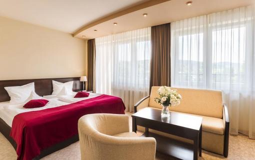 Hotel Kudowa 1151193121
