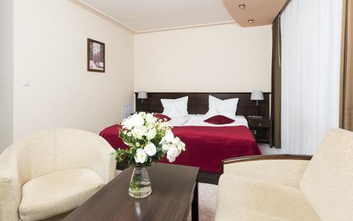 Hotel Kudowa 1151193113