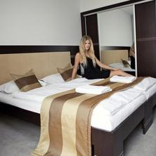 Hotel Dolphin Senec 37760480