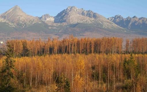Podzimní relax pobyt na 2 noci-Hotel Avalanche 1154821225