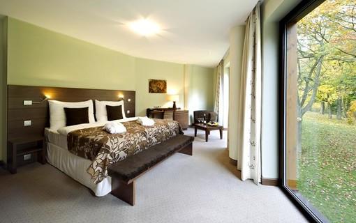 Wellness pobyt na 2 noci-Hotel Zochova Chata 1154821341