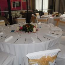 Salamandra hotel Hámre - Dolné Hámre 33562686