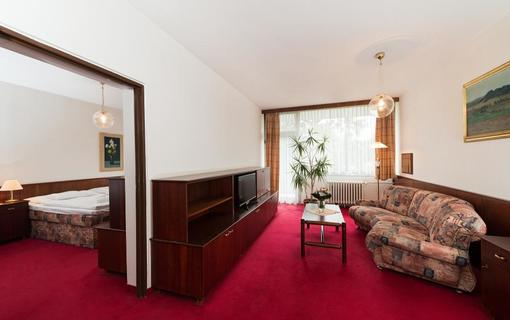 Splendid Ensana Health Spa Hotel 1154822463