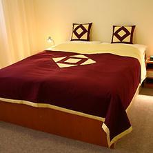Hotel Termál Vyhne 33572960