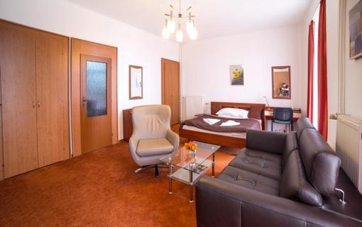 hotel PALACE 1154943297