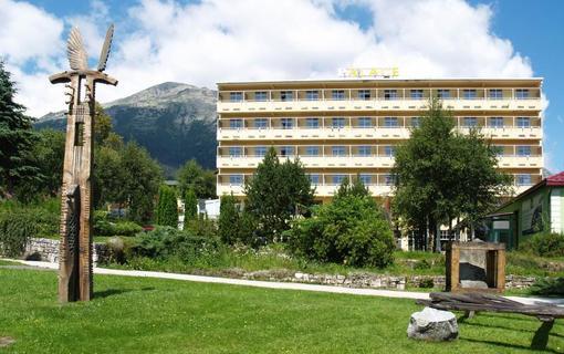 hotel PALACE 1154943345