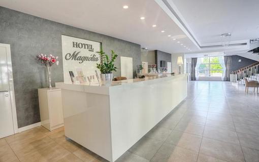 Hotel Magnólia 1150770225